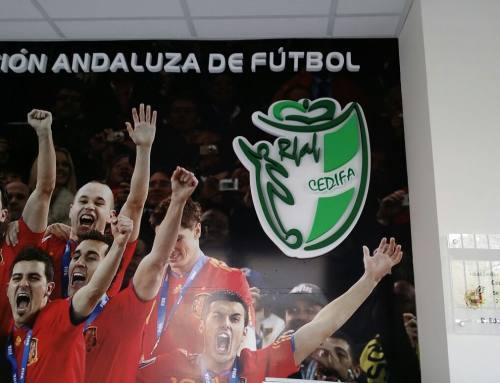Real Federación Andaluza de Fútbol